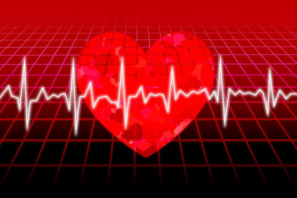 心臓カテーテル業務に入る臨床工学技士におすすめの本3選