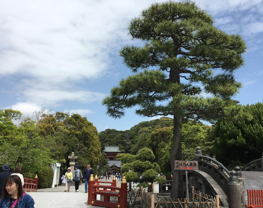 LEZYNE SUPER GPSのナビ機能を使って鎌倉まで行ってきたよ